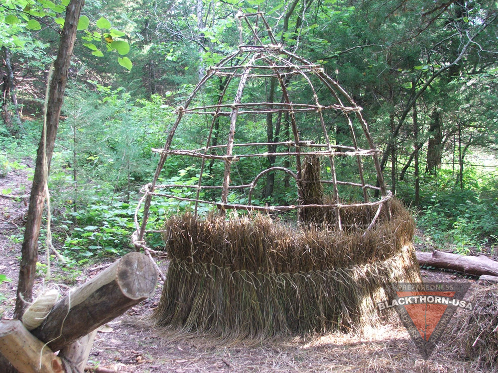 Primitive Grass Hut